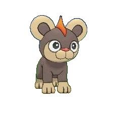 Litleo and Pyroar | Pokémon XY Stuff  Litleo